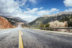 Fantastic road in the mountains. Carpathians. Ukraine. Europe Stock Photography