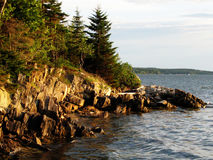 Fantastic Rocky Coastline on an Island in Maine Royalty Free Stock Image