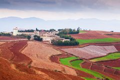 Fantastic scenery rural of south Yunnan, China. Beautiful wheat fields on the Red Land of Dongchuan. Two motorcycles on the road, stock photography