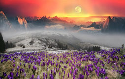 Fantastic scenery Stock Images