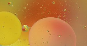 Fantastic structure of colorful bubbles. Chaotic motion. Abstract background. Fantastic structure of colorful bubbles. Chaotic motion. Abstract colorful paint stock video footage