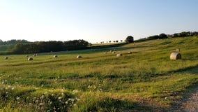 Rural inspirational landscape. Fantastic summer rural inspirational landscape in Marche, an italian region stock image