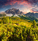 Fantastic summer sunrise on the Tofane mountain range. View from Falzarego pass. Dolomites mountains, Alps, Italy, Europe Royalty Free Stock Photography