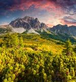 Fantastic summer sunrise on the Tofane mountain range. Royalty Free Stock Photography