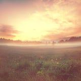 Fantastic summer sunset landscape Stock Photography