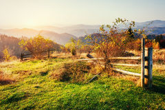 Fantastic sunny hills under morning sky. Dramatic scenery. Carpa Royalty Free Stock Images
