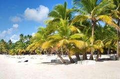 Fantastic tropical beach Stock Image