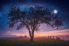 Fantastic unreal landscape. The meeting of day and night in a foggy valley with big tree on a meadow and full moon in a starry sky. Fantastic unreal landscape Stock Images