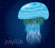 Fantastic vector jellyfish Stock Photos