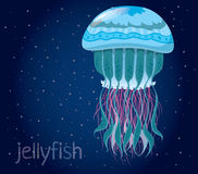 Fantastic vector jellyfish Stock Photo