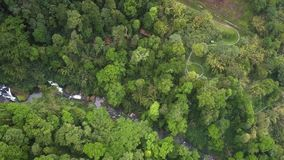 High aerial view highland with gorge in jungle. Fantastic very high aerial view Vietnamese highland with distant gorge in thick jungle stock footage