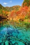 Fantastic view of the Five Flower Lake (Multicolored Lake stock images