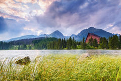 Fantastic view of high mountains and green forest. Fantastic view of high mountains and green forest on sunny summer day  from the shore of lake with huge Royalty Free Stock Photography