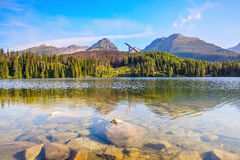 Fantastic view of high mountains and green forest. Fantastic view of high mountains and green forest on sunny summer day  from the shore of lake with huge Royalty Free Stock Image