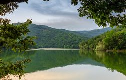 Fantastic view of the mountain green lake with reflection and th. E branches of a oak, Serbia, Europe.Picturesque scene Stock Images