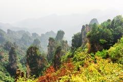 Fantastic view of wooded natural quartz sandstone pillars royalty free stock image