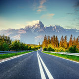 Fantastic views of the asphalt road in the mountains. Fantastic views of the asphalt road in the mountains Stock Image
