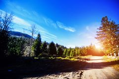 Fantastic views of the Carpathian mountains, Ukraine, Europe. Summer scene on a sunny day. Mountain valley road landscape. Beauty. Of nature concept background royalty free stock images