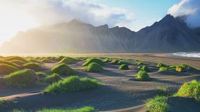 Fantastic west of the mountains and volcanic lava sand dunes on the beach Stokksness, Iceland stock video