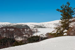 Fantastic winter landscape. Blue sky. Bulgaria Europe. Beauty wo Royalty Free Stock Images