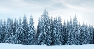 Fantastic winter landscape Royalty Free Stock Images