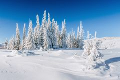 Fantastic winter landscape. Magic sunset in the mountains a frosty day. On the eve of the holiday. The dramatic scene Royalty Free Stock Photography