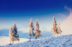 Fantastic winter landscape in the mountains of Ukraine. In antic Royalty Free Stock Images