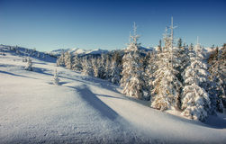 Fantastic winter landscape in the mountains of Ukraine. In antic Stock Images