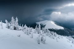 Fantastic winter landscape with snowy trees. Drammatic sky and icy mountain peak. Carpathian mountains, Ukraine, Europe. Christmas holiday concept Royalty Free Stock Photos