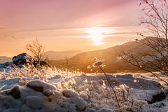 Fantastic winter landscape at sunset Royalty Free Stock Photos