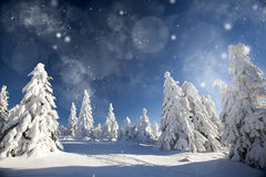 Fantastic winter landscape Royalty Free Stock Photos