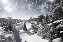 Fantastic winter landscape Stock Images