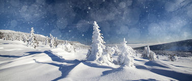 Fantastic winter landscape Stock Photography
