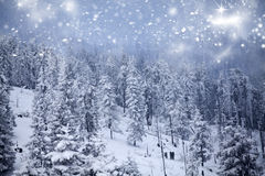 Fantastic winter landscape Royalty Free Stock Photography