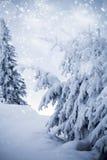 Fantastic winter landscape Royalty Free Stock Images