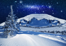 Fantastic winter starlight night Stock Photos