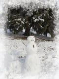 Fantastic Winter wonderland,snowman Stock Photography