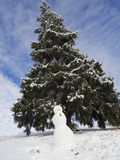 Fantastic Winter wonderland , snowman Royalty Free Stock Images
