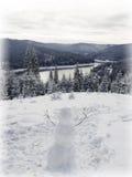 Fantastic Winter wonderland , snowman Stock Photos