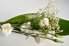 Bouquet of withe flowers. Fantastically Bouquet of withe flowers Royalty Free Stock Photography