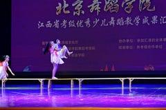 Fantastichi il Jiangxi d'istruzione di classificazione di mostra di risultato dei bambini della prova del cielo di Pechino dell'a Fotografia Stock