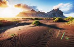 Fantastico ad ovest delle montagne e delle dune di sabbia vulcaniche della lava sulla spiaggia Stokksness, Islanda immagini stock