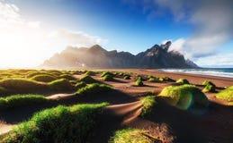 Fantastico ad ovest delle montagne e delle dune di sabbia vulcaniche della lava sulla spiaggia Stokksness, Islanda immagini stock libere da diritti