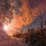 Fantastisch de winterlandschap Royalty-vrije Stock Foto's