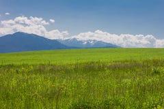 Fantastisch landschap Royalty-vrije Stock Foto's