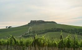 Fantastische Ansicht eines Italien-Landsitzes von der Straße stockbild