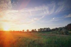 Fantastische dag met verse bloeiende heuvels in warm zonlicht Dramatische en schilderachtige ochtendscène Plaatsplaats: Europa stock fotografie