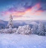Fantastische de winterzonsopgang in Karpatische bergen met sneeuwdekking stock foto