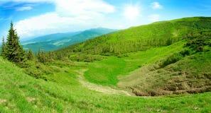 Fantastische groene weide in berg Stock Afbeelding