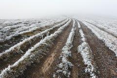 Fantastische Herbstlandschaft mit Frost Lizenzfreie Stockfotografie